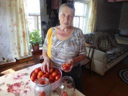 Н.Д. Токмалаева.