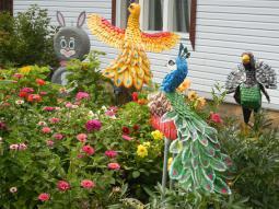 Птицы в саду у Журавлёвых.